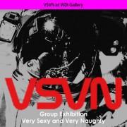 VSVN at WDI Gallery