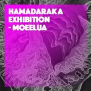 HAMADARAKA Exhibition - MOEELUA